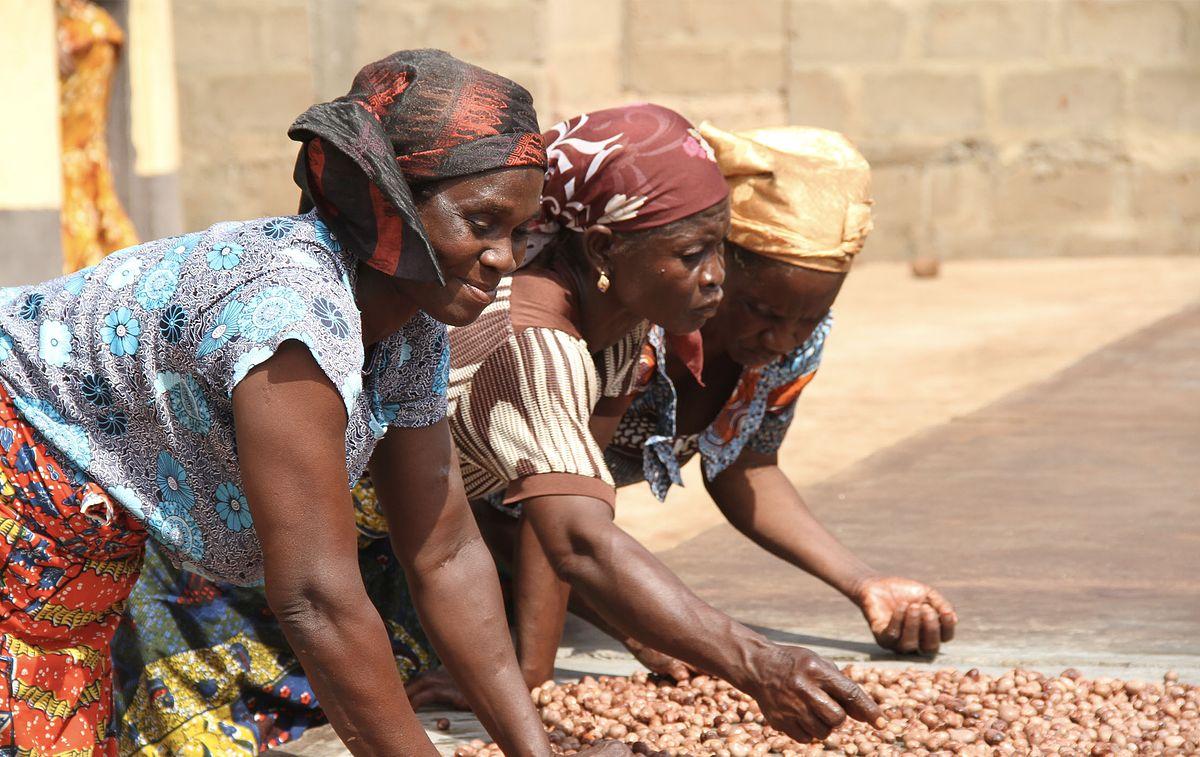 Women in Ghana sorting Shea nuts